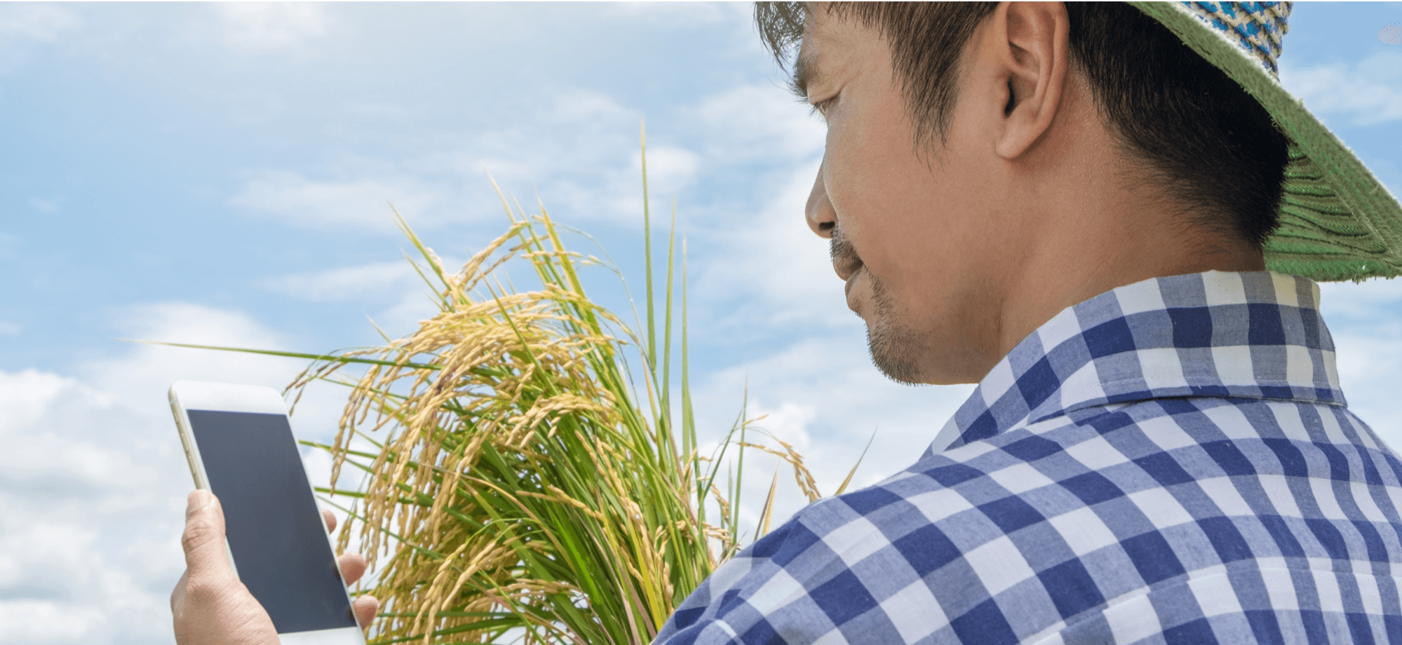 Rural Banks Rooting for the PH Agricultural Sector